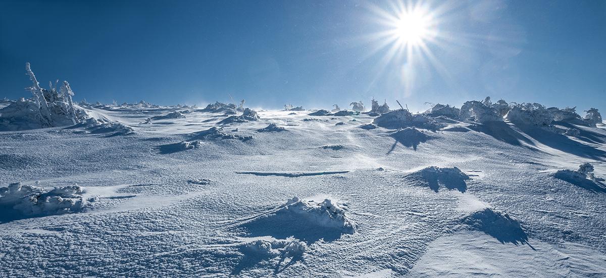 antarctic-ice-desert