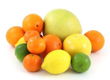 פירות ההדר