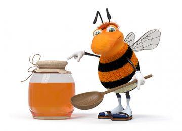 דבש הדבורים