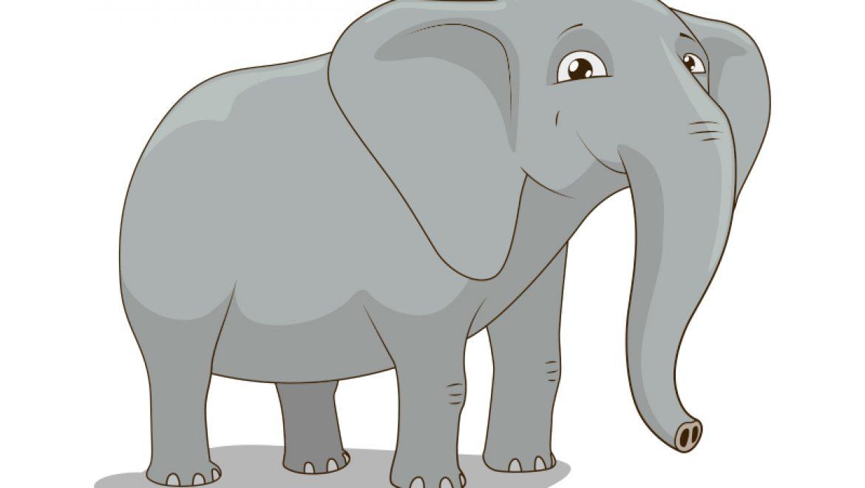 ציור פיל
