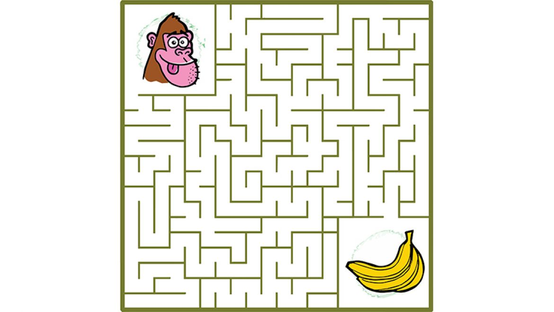הקוף והבננות