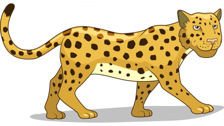 ציור נמר